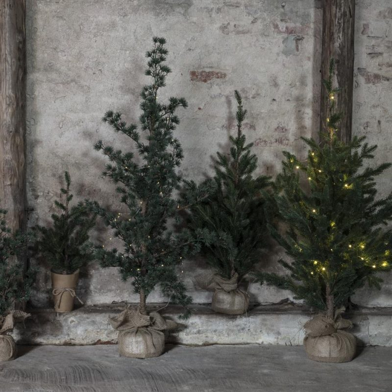 Granträd med jutefot