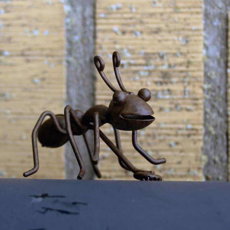 Myra med magnet